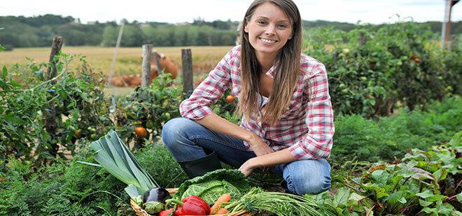 Кредитование сельского хозяйства в Украине