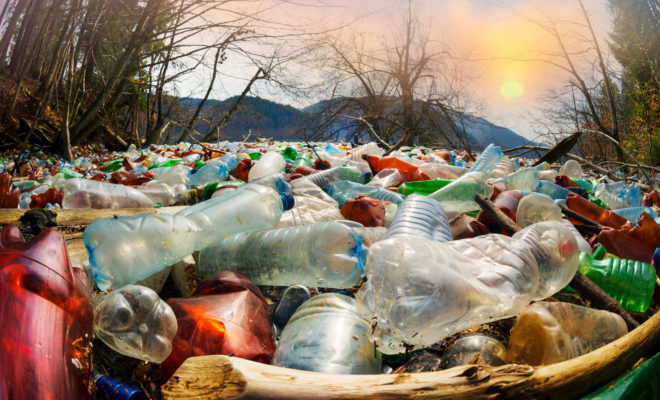 Как сэкономить, делая вклад в экологию